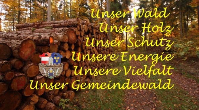 Forstausschuss der Stadtgemeinde Hainfeld – Sitzung vom 22.12.2014